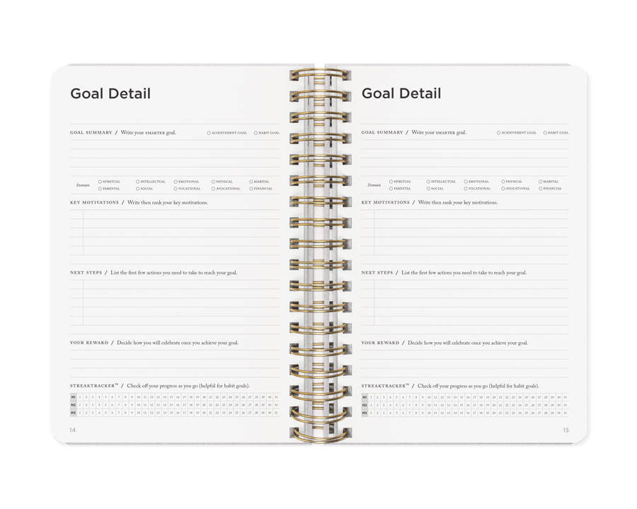 Goal Detail Page in the Full Focus Planner